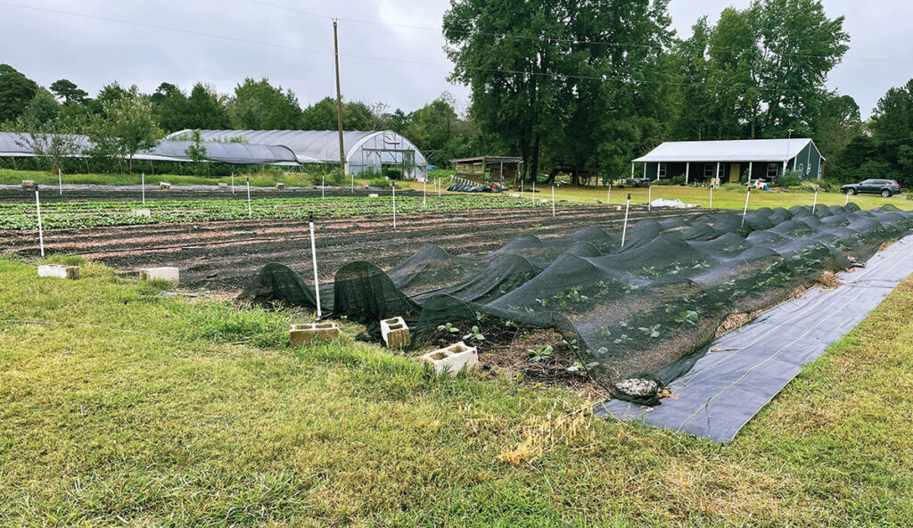 Five Acre Farms in Red Bud, Arkansas. Submitted Photo.